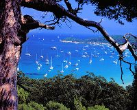 how to get to porquerolles from toulon